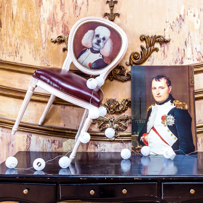 Стул Музейный экспонат версия 3 Наполеон во дворце Тюильри с сидением из экокожи