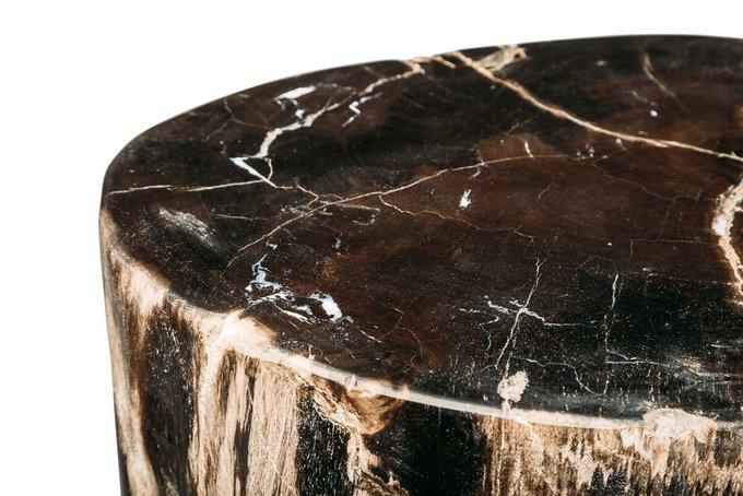 Декоративный пенек Джемур из окаменелого дерева 383406