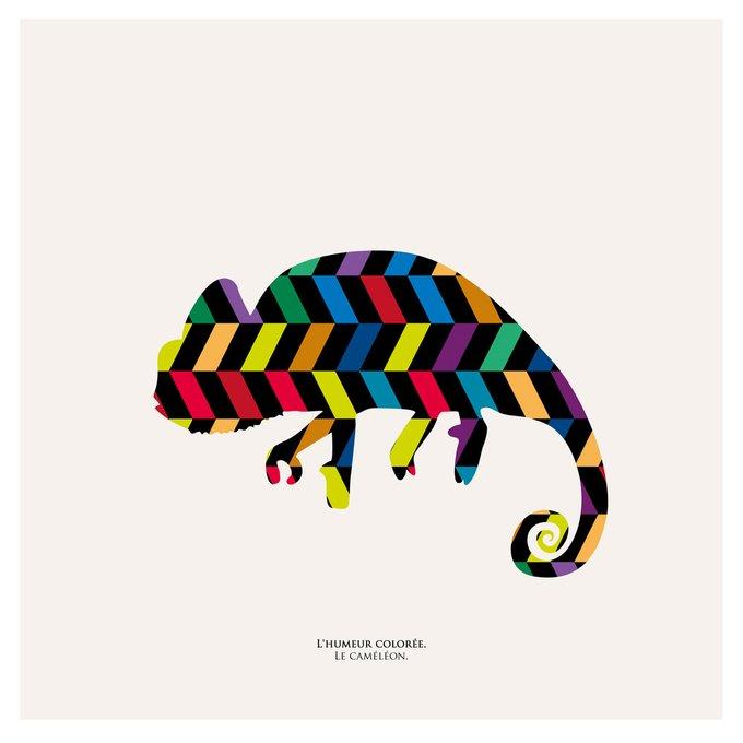 "Картина ""Семицветное настроение, хамелеон"""