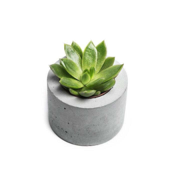 кашпо ЦИЛИНДР S натуральный бетон