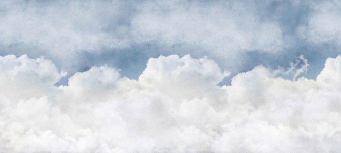 Дизайнерские обои Sky Flight