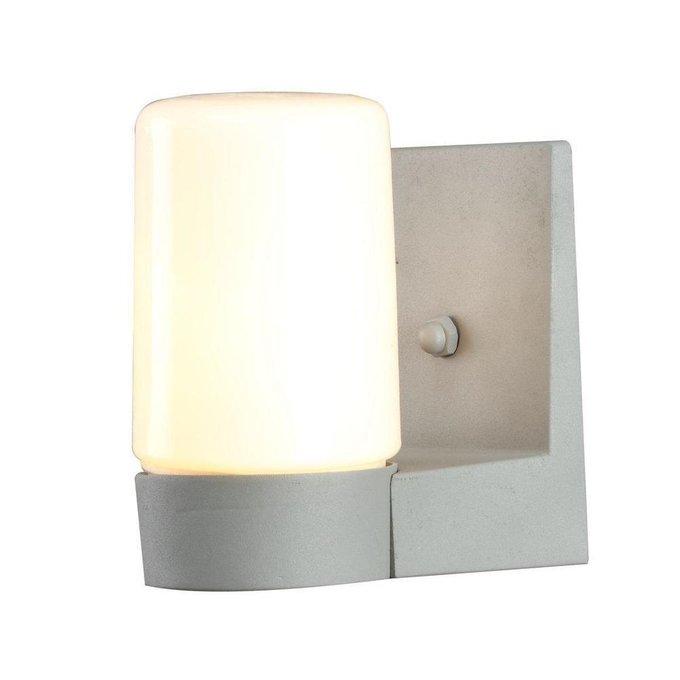 Уличный настенный светильник Arte Lamp Spasso