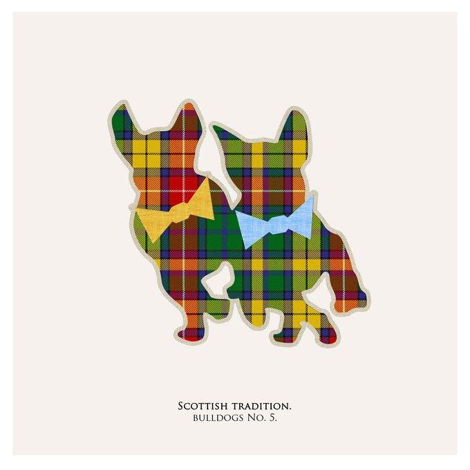 Картина (репродукция, постер): Бульдог в шотландской клетке №5