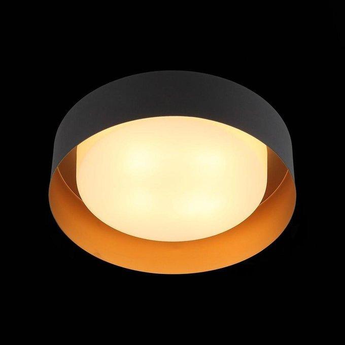 Потолочный светильник Chio с плафоном из стекла