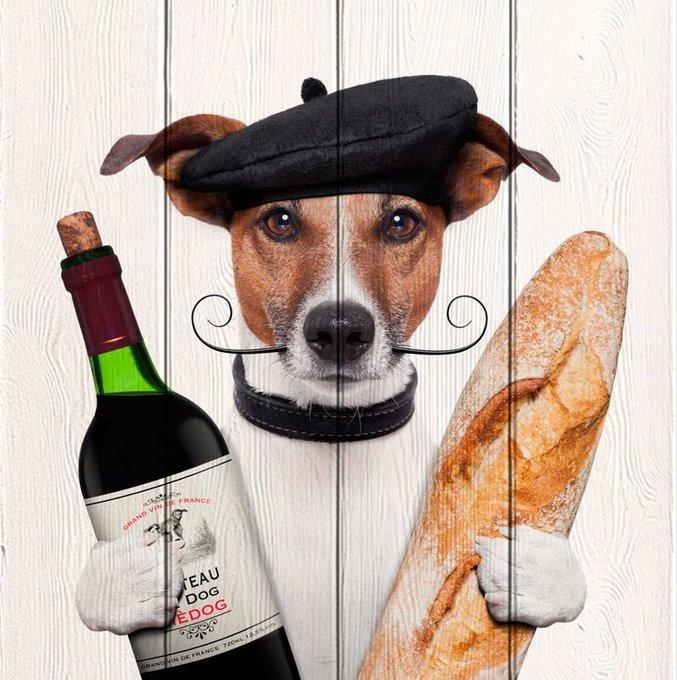 Картина Собака с вином из массива сосны 90х90