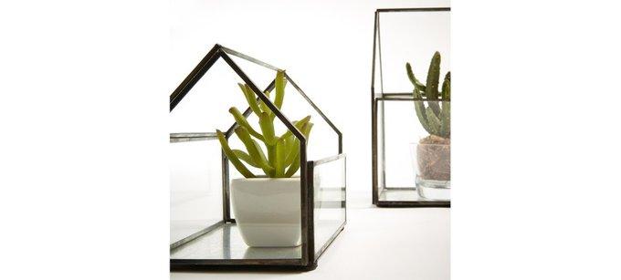 Набор из двух террариумов Octo для цветов