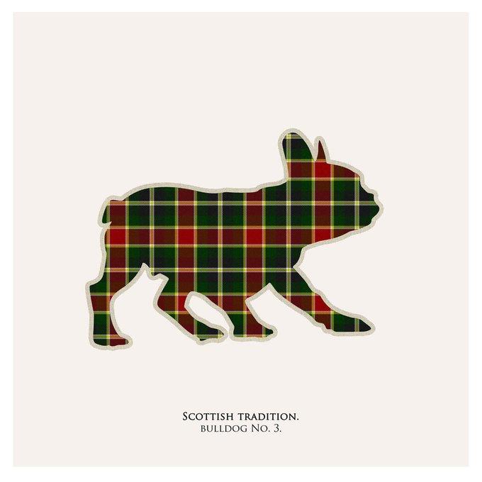 Картина (репродукция, постер): Бульдог в шотландской клетке №3