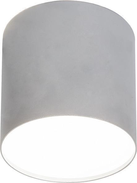 Потолочный светильник Point Plexi серебряного цвета