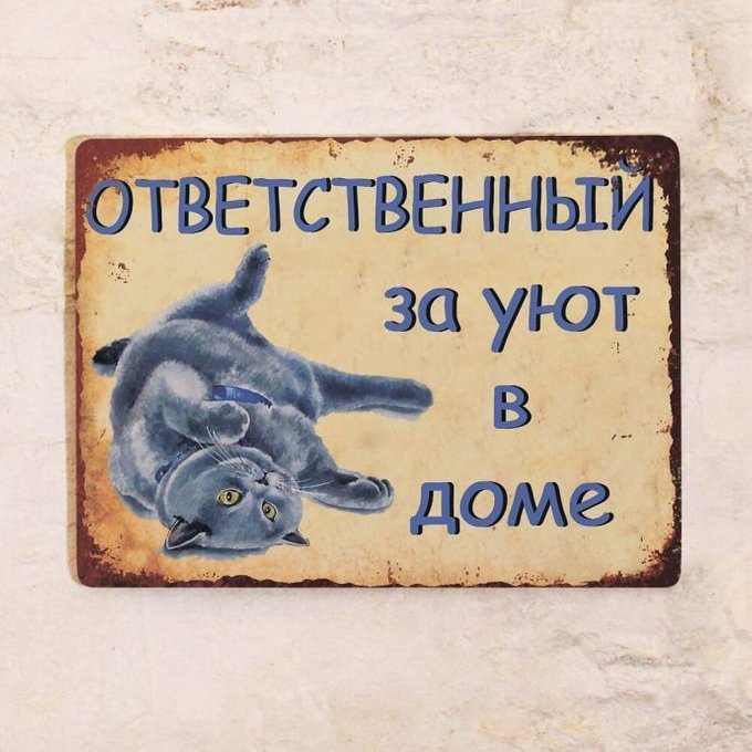 Жестяная табличка Британский кот