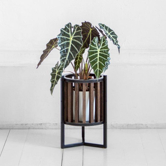 Кашпо  Куг в коричневом цвете дуба с черным металлом