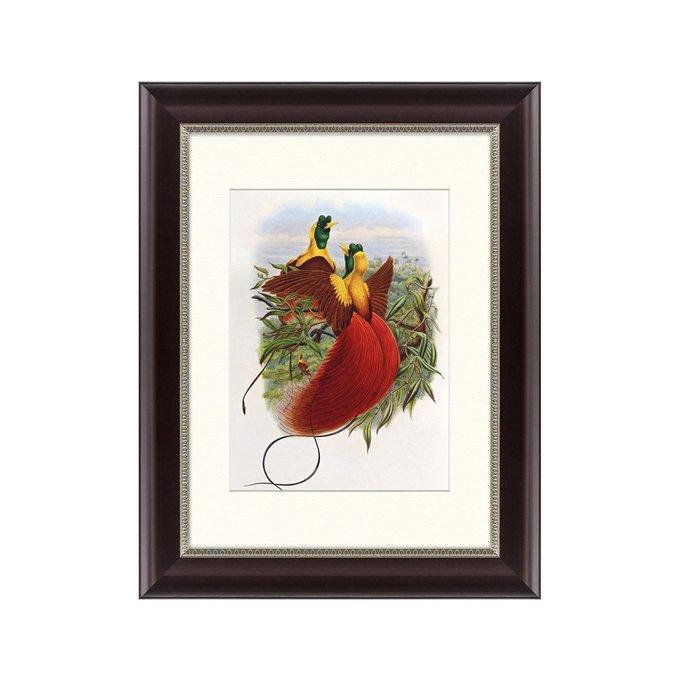 Картина Красные райские птицы 1880 г.