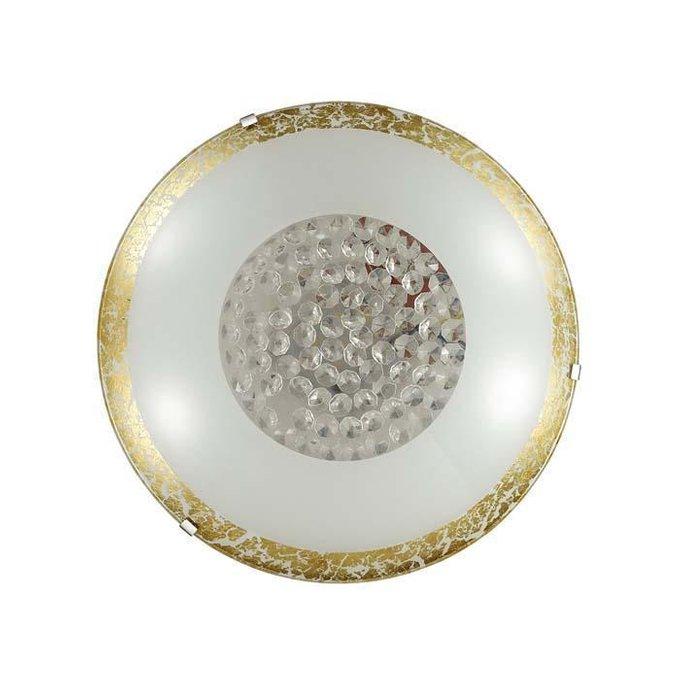 Настенно-потолочный светодиодный светильник Eleka с плафоном из стекла