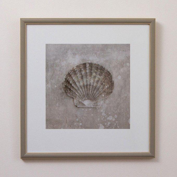 Постер Ракушки северного моря 0.1