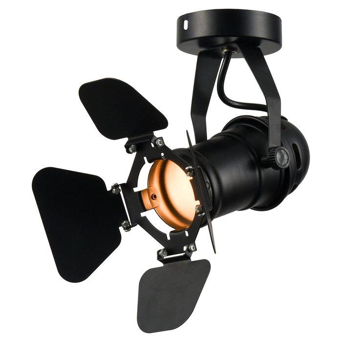 Потолочный светильник Expression черного цвета