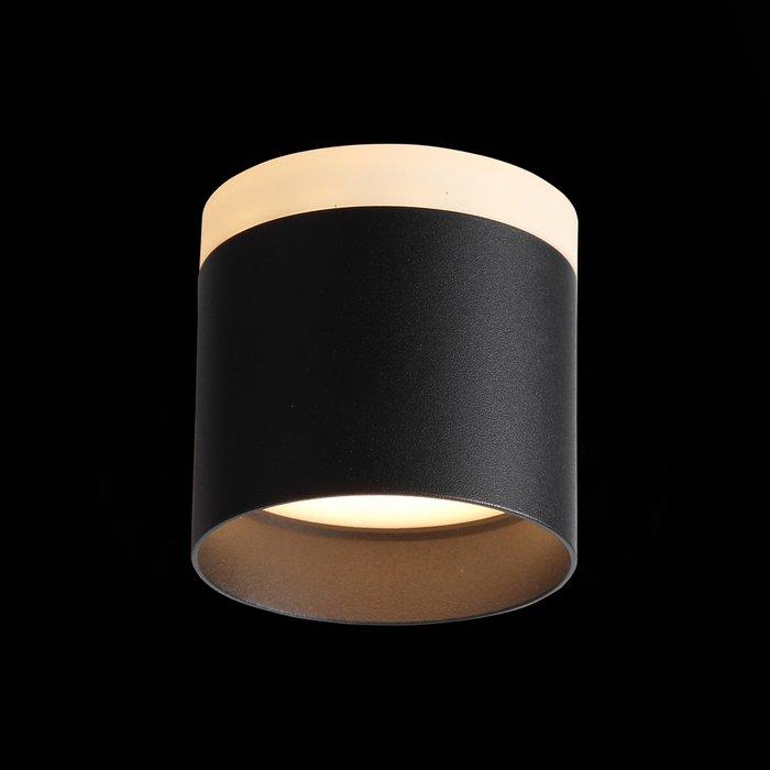 Светильник потолочный Panaggio черного цвета