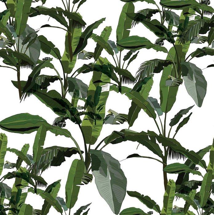 Обои Банановые листья на флизелиновой основе