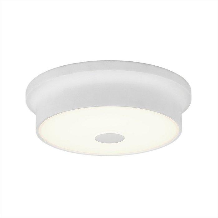 Потолочный светодиодный светильник Фостер-2 белого цвета