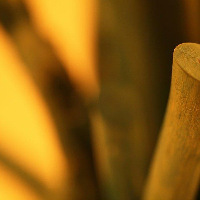 Настольная лампа Ветви и Тени Куст