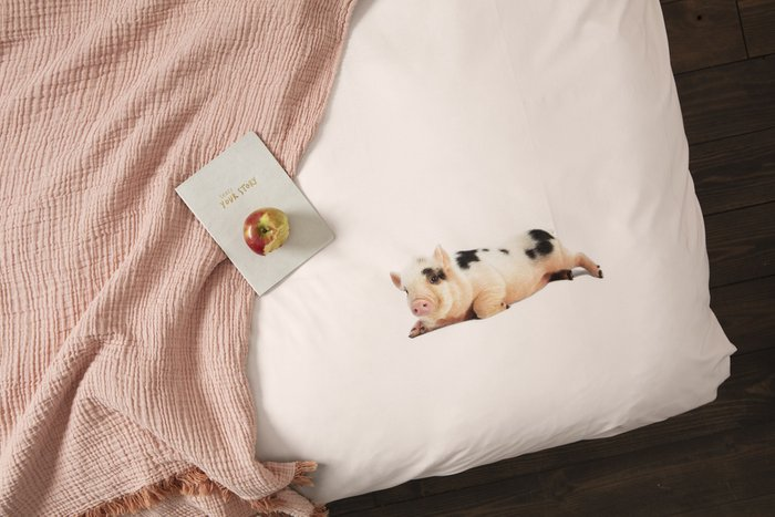 Комплект постельного белья Поросенок розовый 200х220