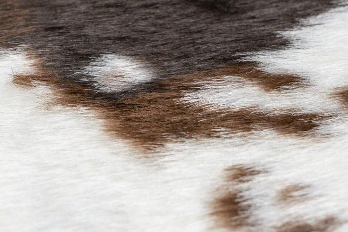 Шкура искусственная Rodeo шотландская корова 200х150