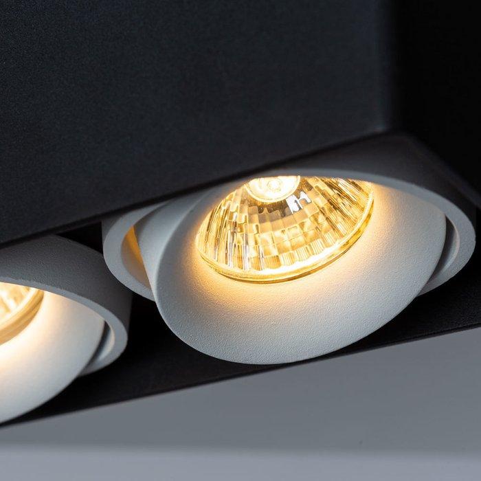 Потолочный светильник Pictor черного цвета