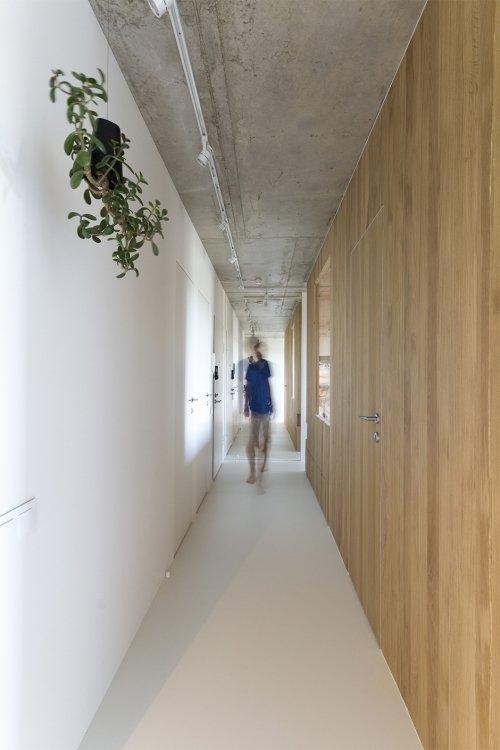 Фотография:  в стиле , Квартира, Студия, Проект недели, Москва, Дарья Бутахина, Александр Кудимов, Монолитный дом, 40-60 метров, архитектурная мастерская Ruetemple – фото на INMYROOM