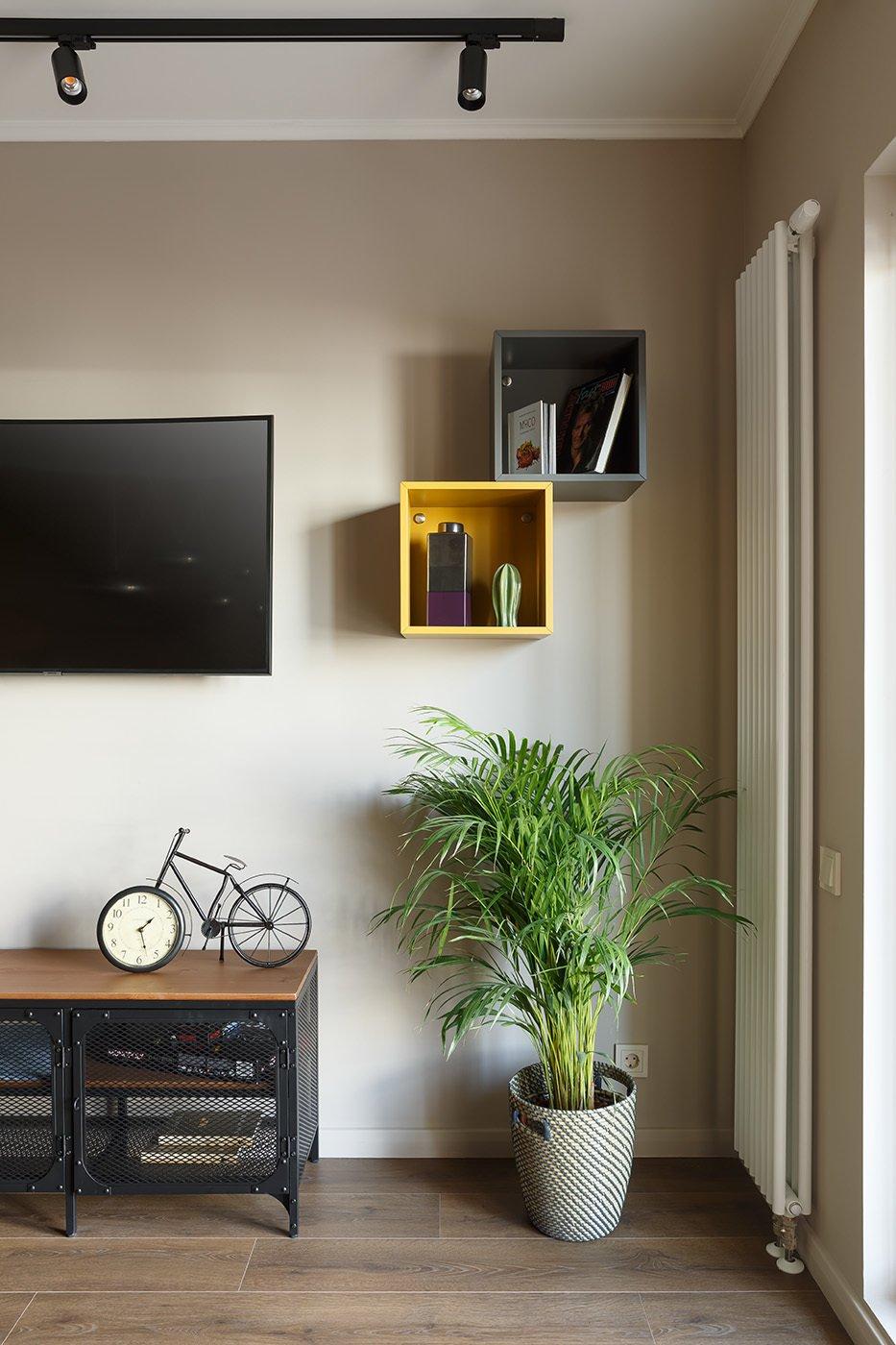 Фотография: Гостиная в стиле Современный, Квартира, Проект недели, 1 комната, 40-60 метров – фото на INMYROOM
