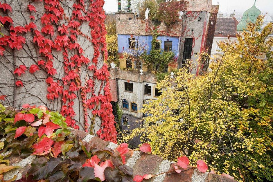 Фотография:  в стиле , Гид, Австрия, дизайн-гид – фото на INMYROOM