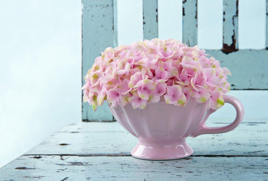 Фотография: Прочее в стиле , Флористика, Стиль жизни, Дача, Цветы – фото на INMYROOM