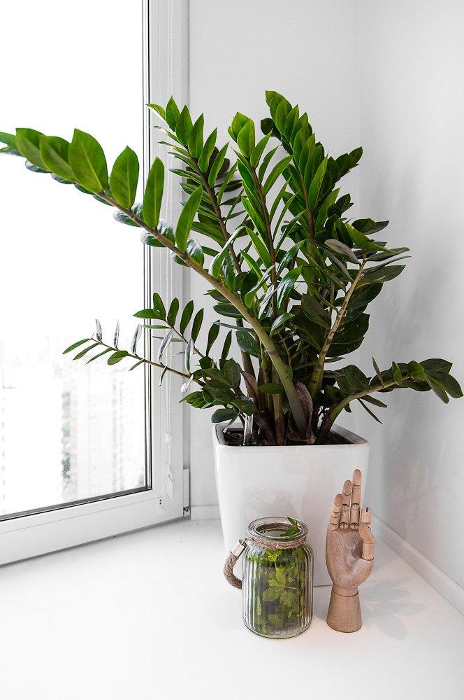 Фотография: Прочее в стиле , Современный, Квартира, Дома и квартиры, IKEA, Минимализм, Проект недели – фото на InMyRoom.ru