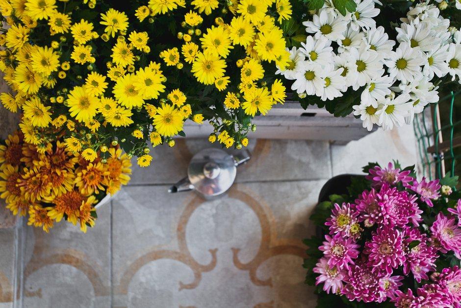 Фотография: Флористика в стиле , Квартира, Дома и квартиры, IKEA – фото на INMYROOM