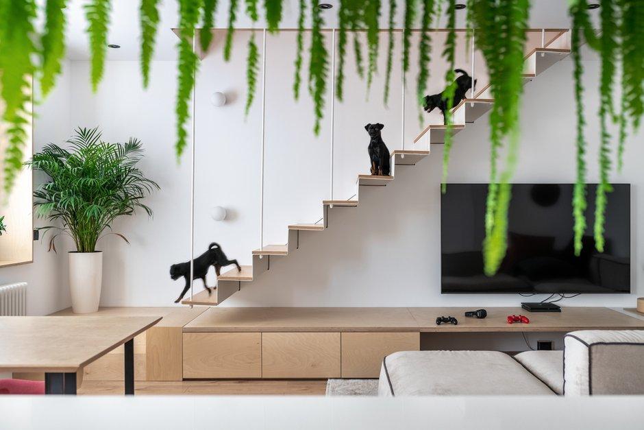 Роль доминирующей текстуры в проекте вверили фанере нейтрального, светлого оттенка. Она не только отлично «работает» с белым бэкграундом интерьера, но и дополняет зелень комнатных растений.