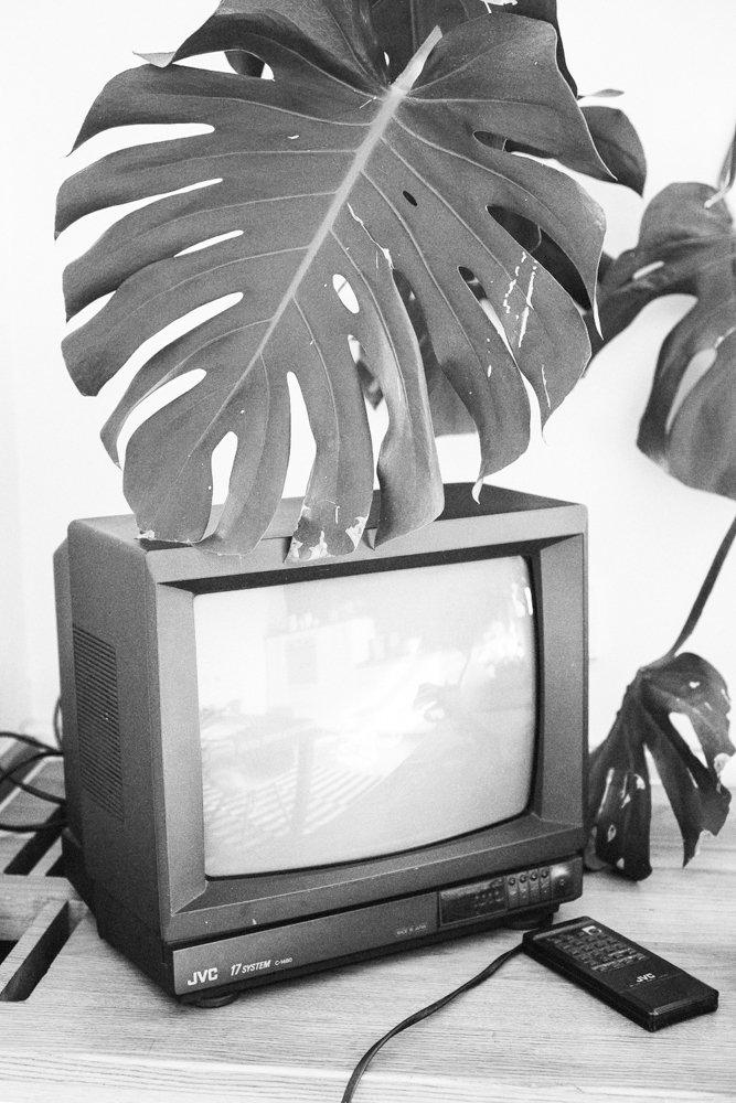 Фотография: Кухня и столовая в стиле Лофт, Минимализм, Скандинавский, Эклектика, Декор интерьера, Квартира, Декор, Мебель и свет, Проект недели, советское ретро в интерьере, эклектика в интерьере, скандинавские мотивы в интерьере, студия в скандинавском стиле, как оформить студию – фото на INMYROOM